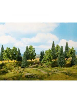 Set 6 copaci si brazi, 14 -- 18 cm